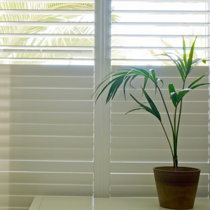 PVC Plantation Shutters in the Macarthur Area